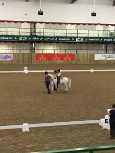 Abbie Waller of Penniwells RDA